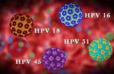 Что делать при обнаружении ВПЧ 18 типа у женщин, как лечить вирус?