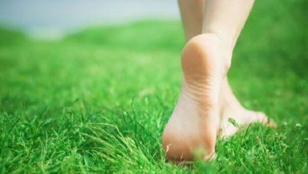 Что такое щипица, как ее вывести (удалить) на ноге, ступне, пальце?