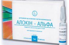 Аллокин-Альфа: как самостоятельно сделать укол и чем разводить лекарство, форма выпуска препарата, противопоказания