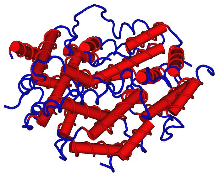 Что такое Интерферон альфа, описание: эффективность интерферонов при лечении папилломавируса